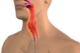 Острый тонзиллит лечение