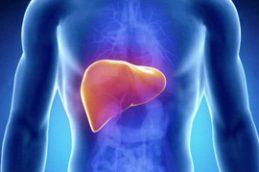 Гепатит С: мифы и правда об опасном заболевании