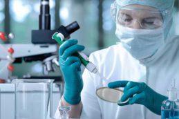Исследователи придумали, как затормозить развитие лекарственной устойчивости у бактерий