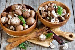 Выявлена повышенная опасность грибов