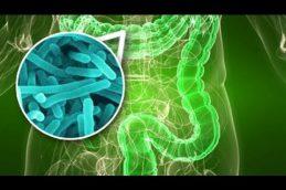 Кишечные бактерии могут вызвать инсульт