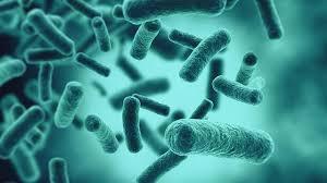 Синтетическая молекула усиливает иммунный ответ на ВИЧ и рак
