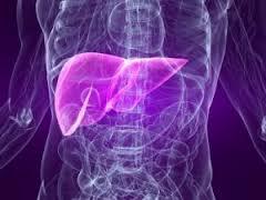 В ЕС появился новый препарат для лечения гепатита С