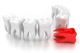 Здоровые зубы — залог долголетия