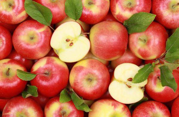 Польза и вред яблока, и как его лучше приготовить
