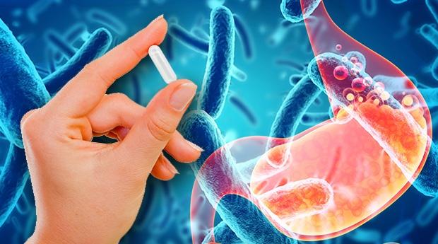 Пробиотики — дружественные бактерии