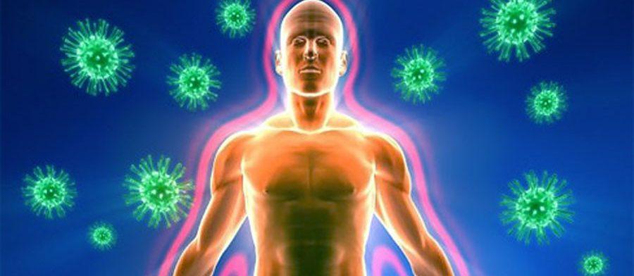 Управление иммунитетом: первый шаг по «воспитанию» сильного иммунитета