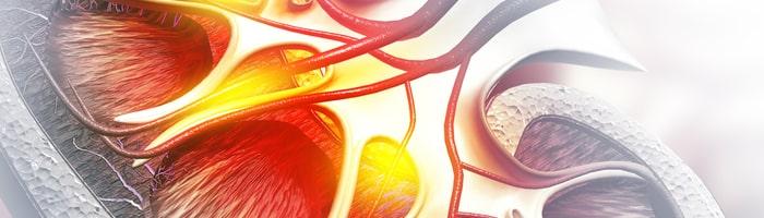 Эксперты FDA не поддержали регистрацию препарата для лечения анемии при ХБП