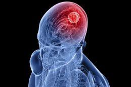 В Прикамье стартует массовая вакцинация против клещевого энцефалита