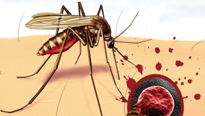 Лекарственно-устойчивая малярия быстро распространяется в Юго-Восточной Азии