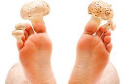В Англии зафиксированы крупные вспышки опасной грибковой инфекции