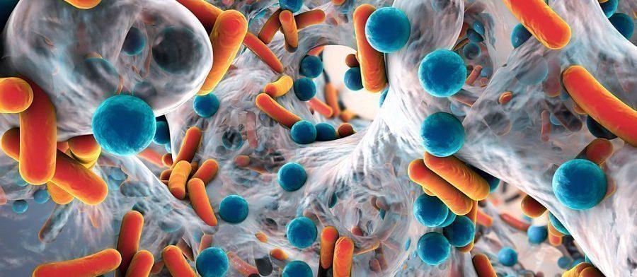 Инфекционные заболевания снижают IQ