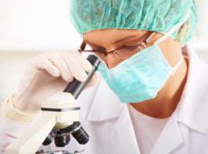 Вирус СПИДа может размножаться в почках человека