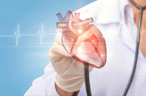 В ВСП заявили о необходимости решительных действий со стороны власти по снижению смертности от сердечно-сосудистых заболеваний